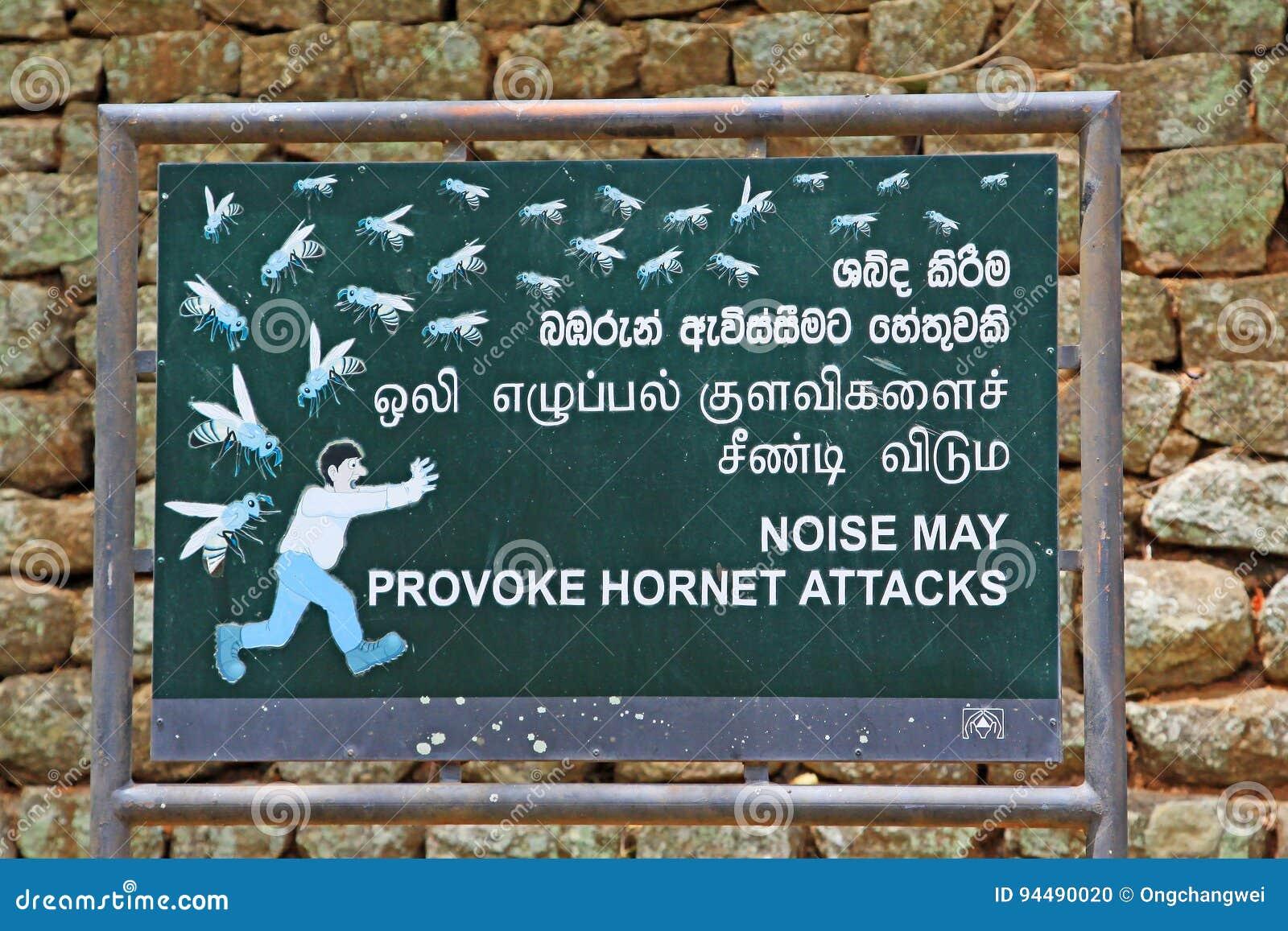 Noise May Provoke Hornet Attacks Board In Sigiriya Sri Lanka