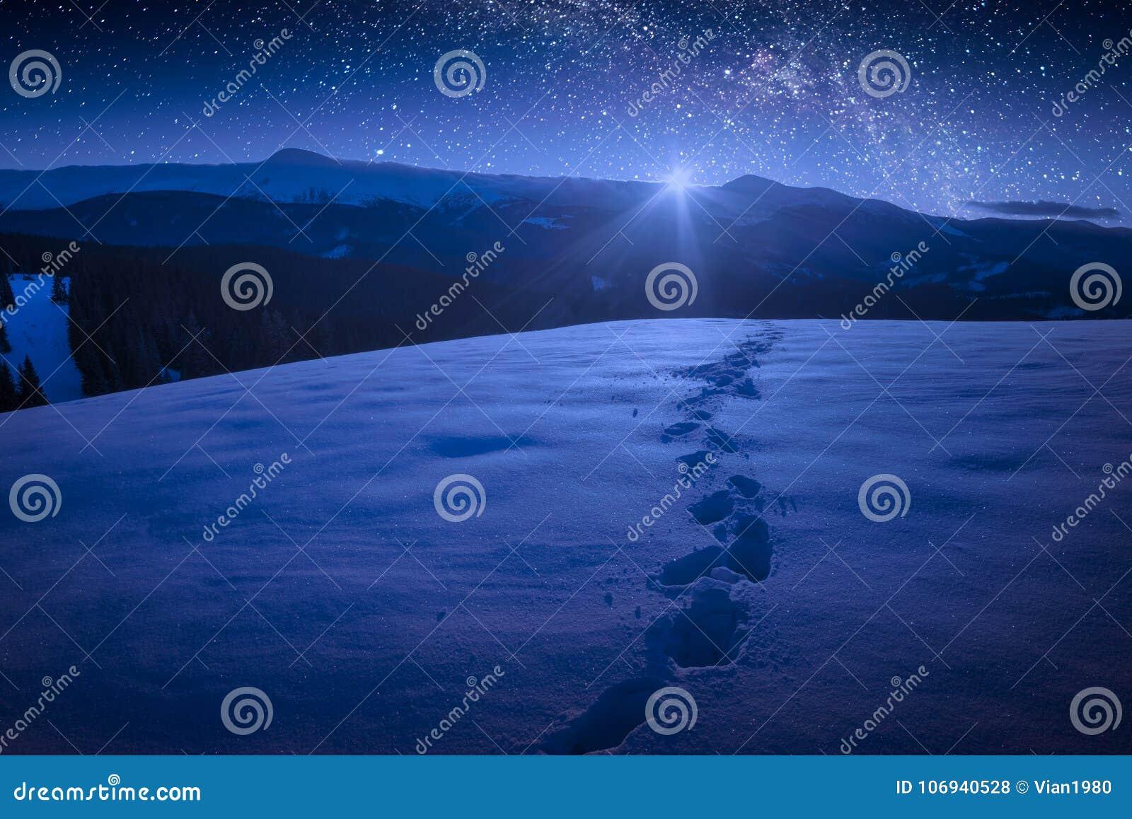Noite bonita do inverno em um vale da montanha carpathian com muitos