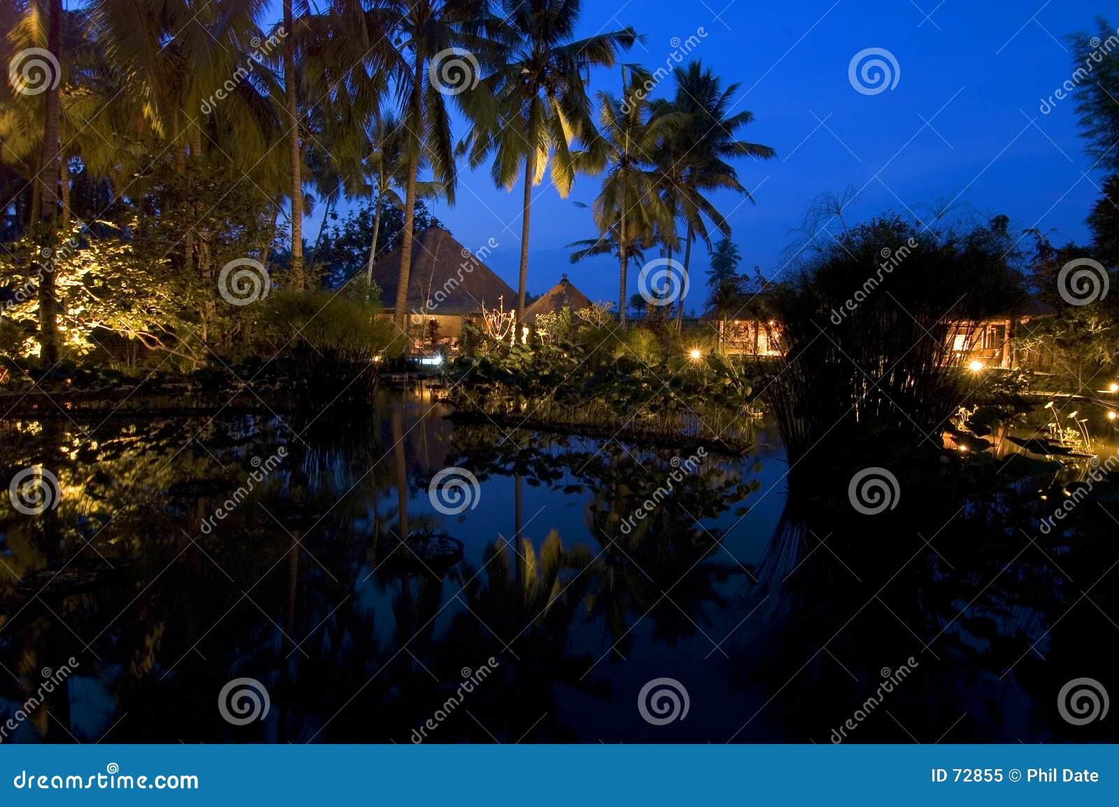 Noite de Bali
