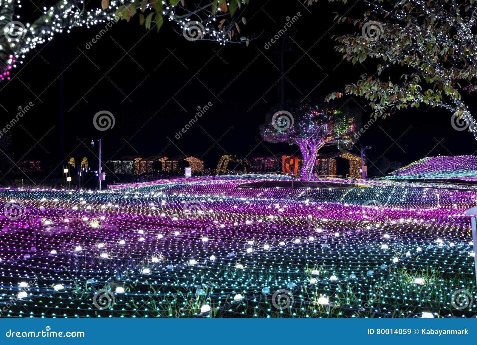 Noite de Coreia do festival da iluminação da luz de Illumia