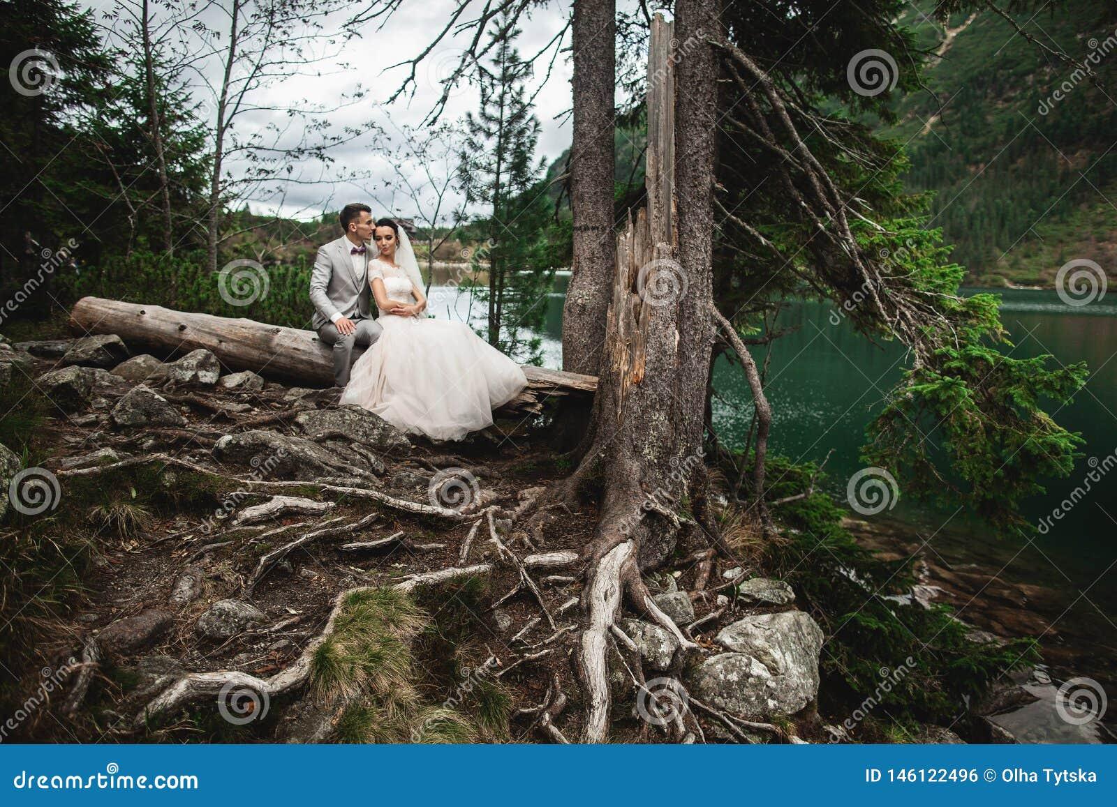 Noivo feliz e sua esposa nova encantador que guardam-se ao sentar-se na costa do lago Morskie Oko da floresta