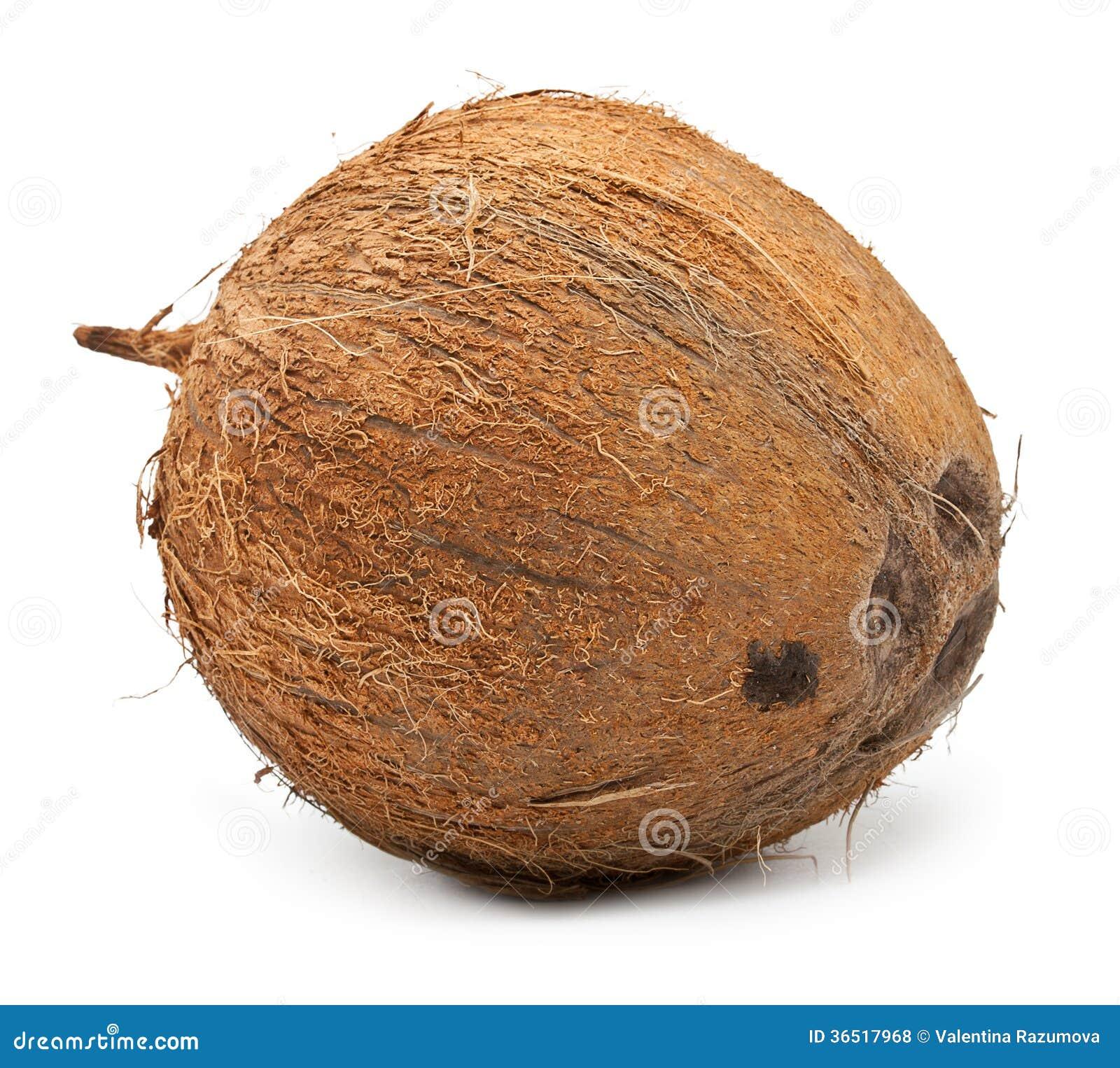 Noix de coco d isolement