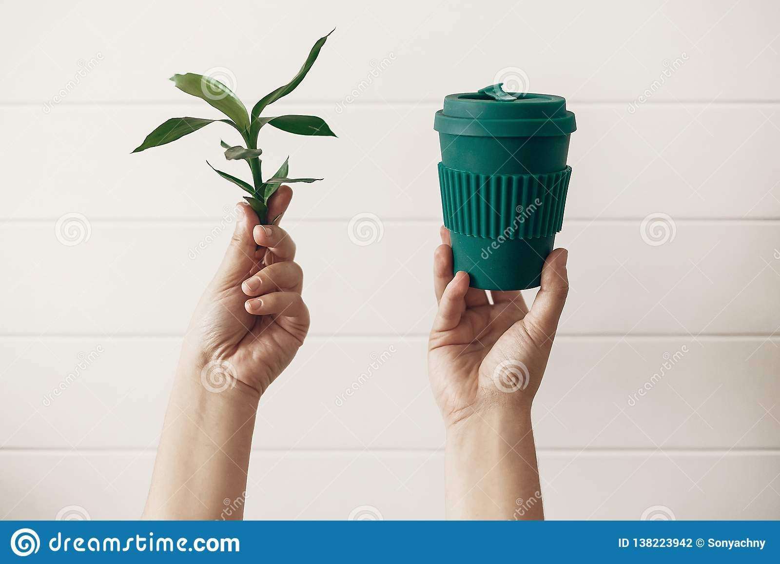 Nollförlorat begrepp, hållbar livsstil Händer som rymmer den stilfulla återvinningsbara ecokaffekoppen och gröna bambusidor på vi