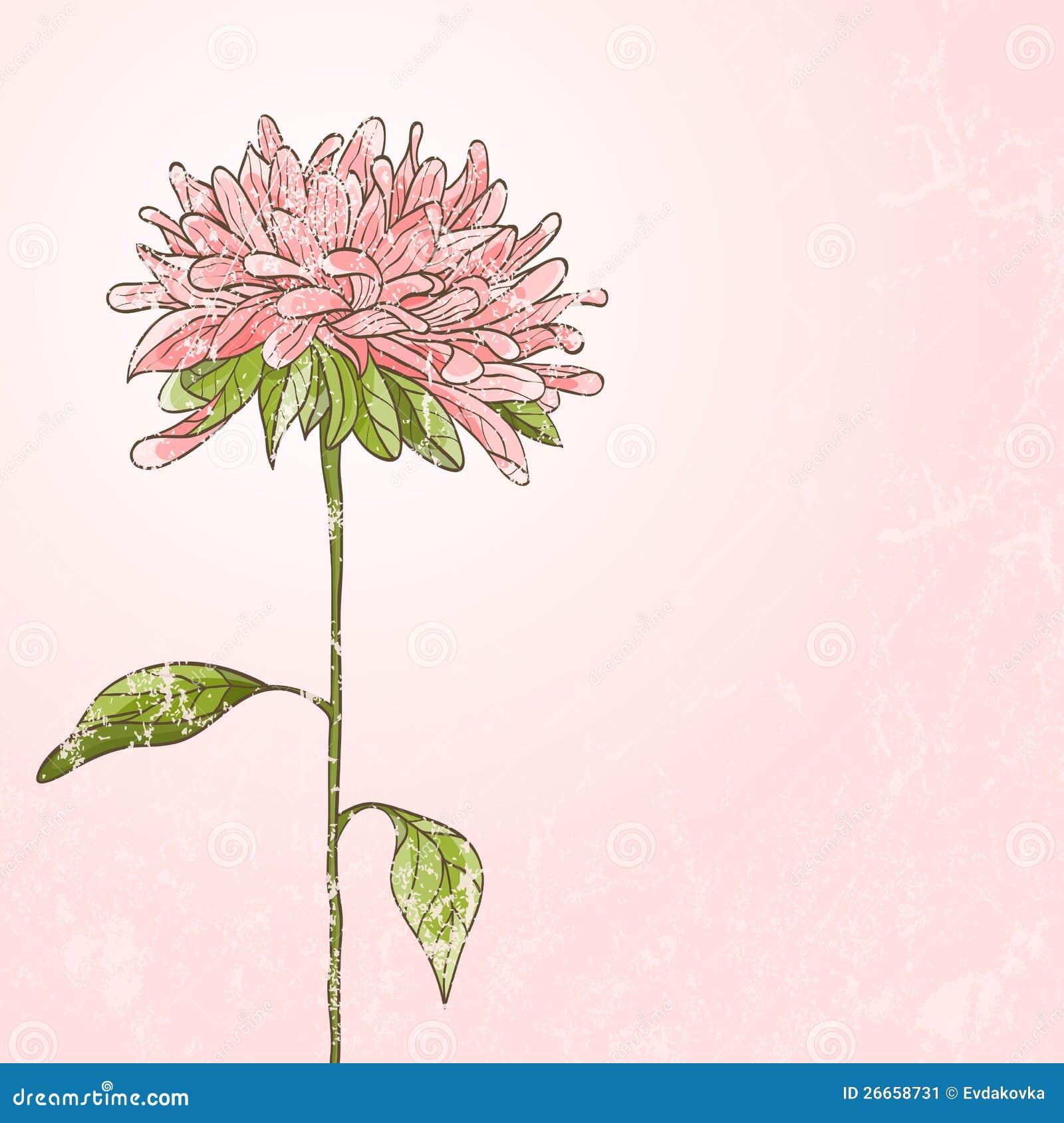 цветок рисованный картинки: