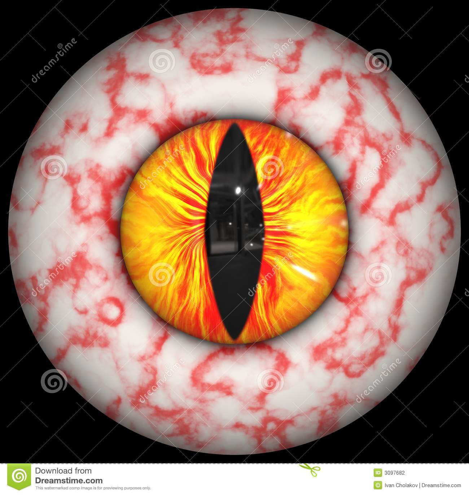眼睛严重充血图片_动物眼充血