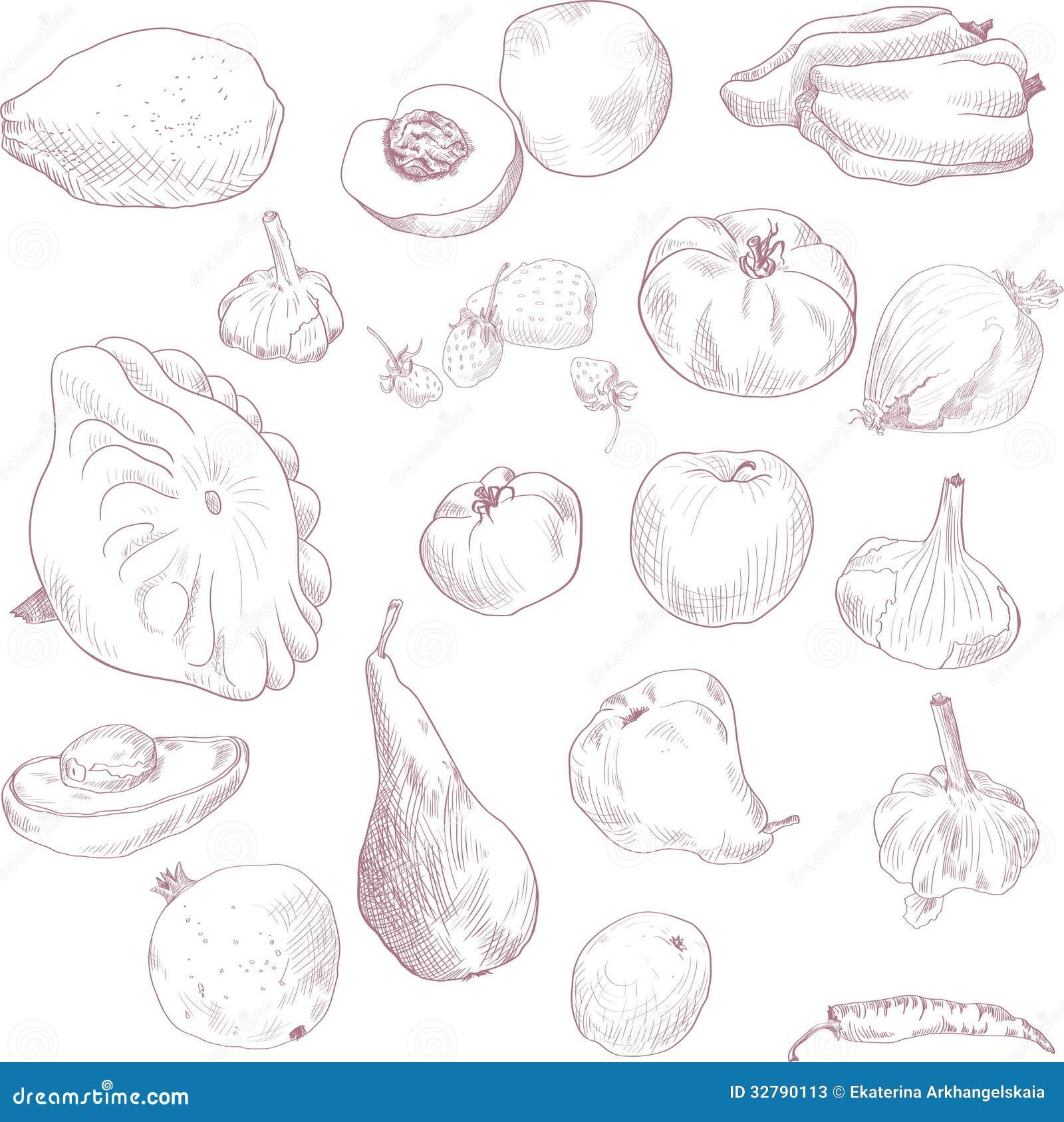 套图画水果和蔬菜,葡萄酒传染媒介例证.图片