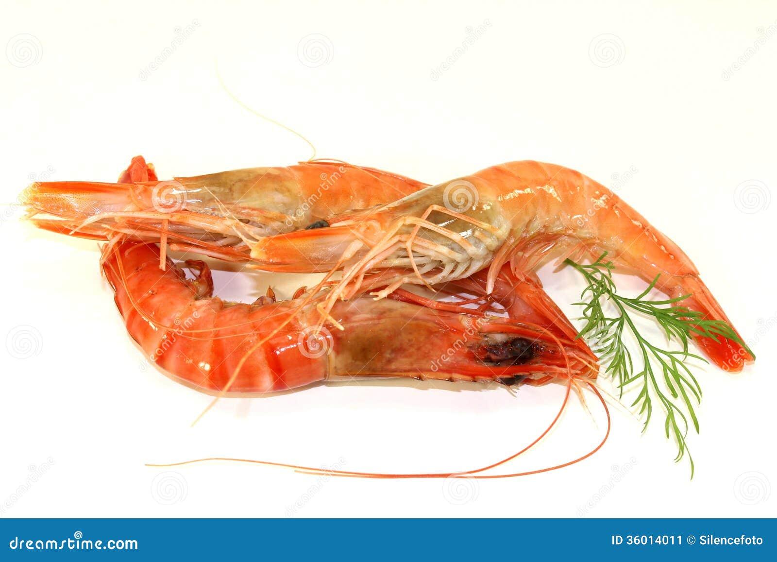 黑老虎虾 库存图片 - 图片