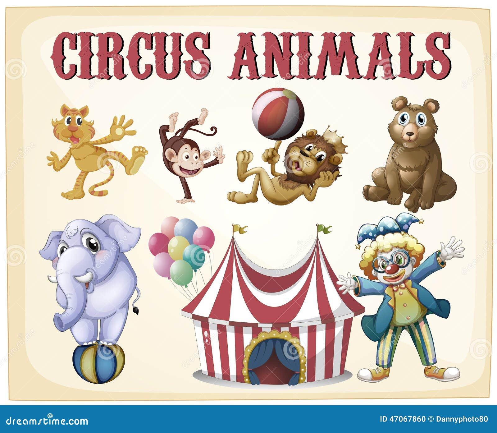 马戏团动物 向量例证