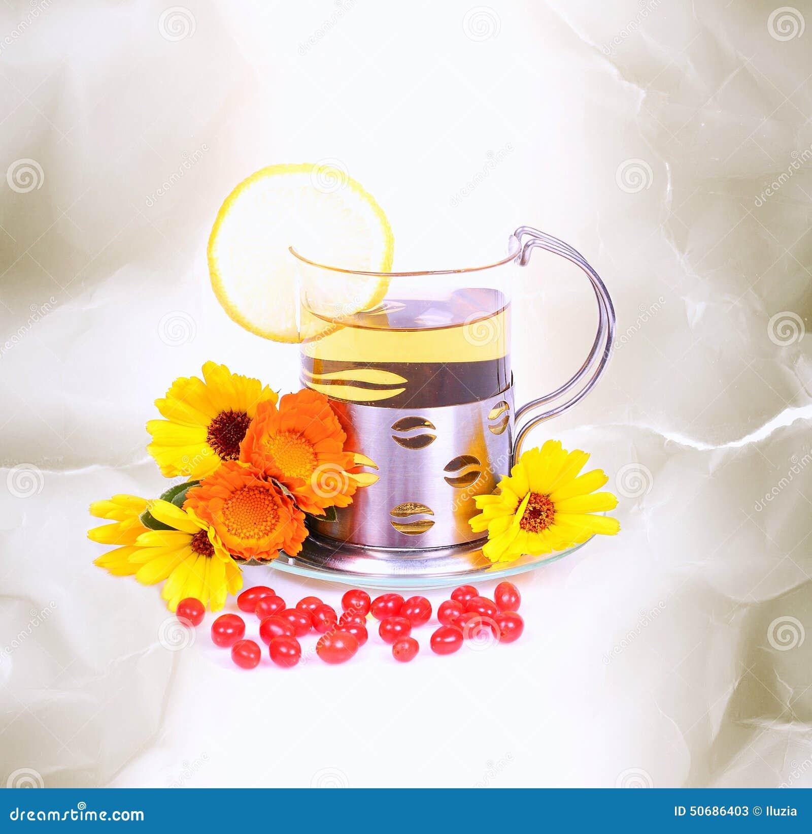 Download 茶 库存图片. 图片 包括有 bossies, 医药, 新鲜, 医学, 开花, 工厂, 培养, 医疗, 自然 - 50686403