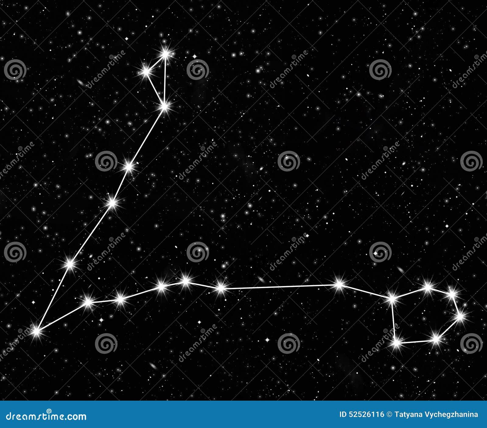 星座双鱼座图片