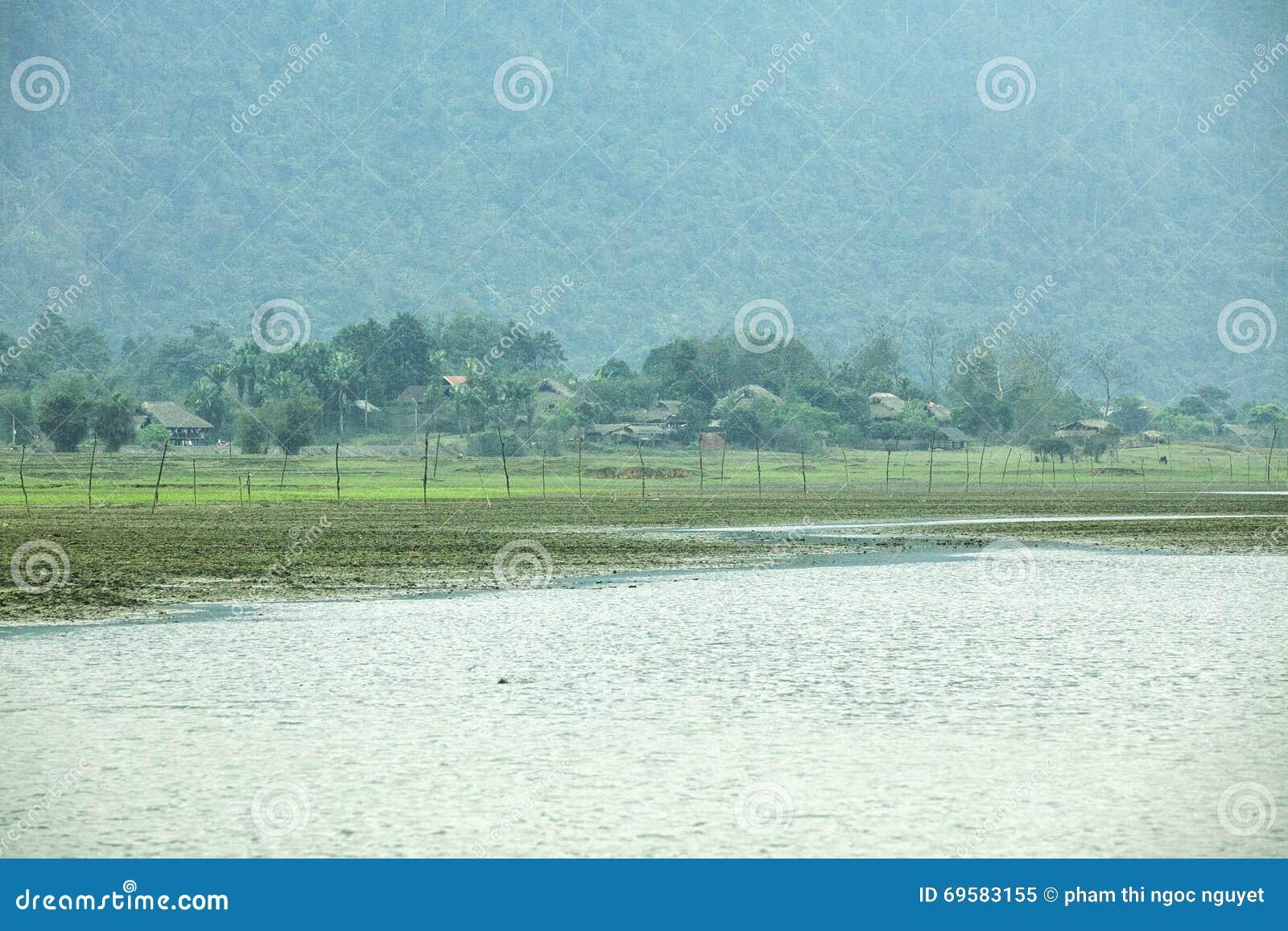 Noong trawa i jezioro