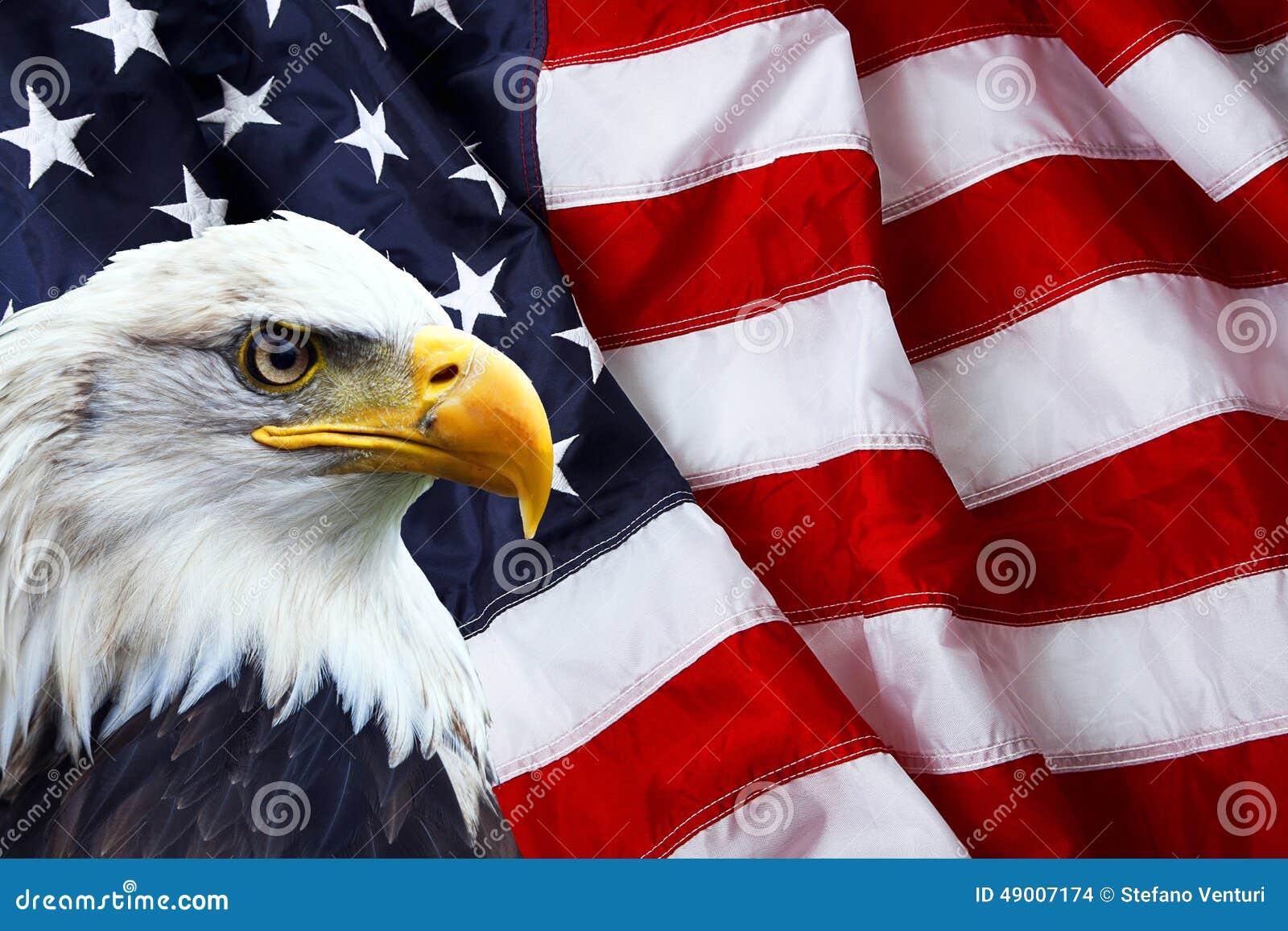 Noordamerikaans Kaal Eagle op Amerikaanse vlag