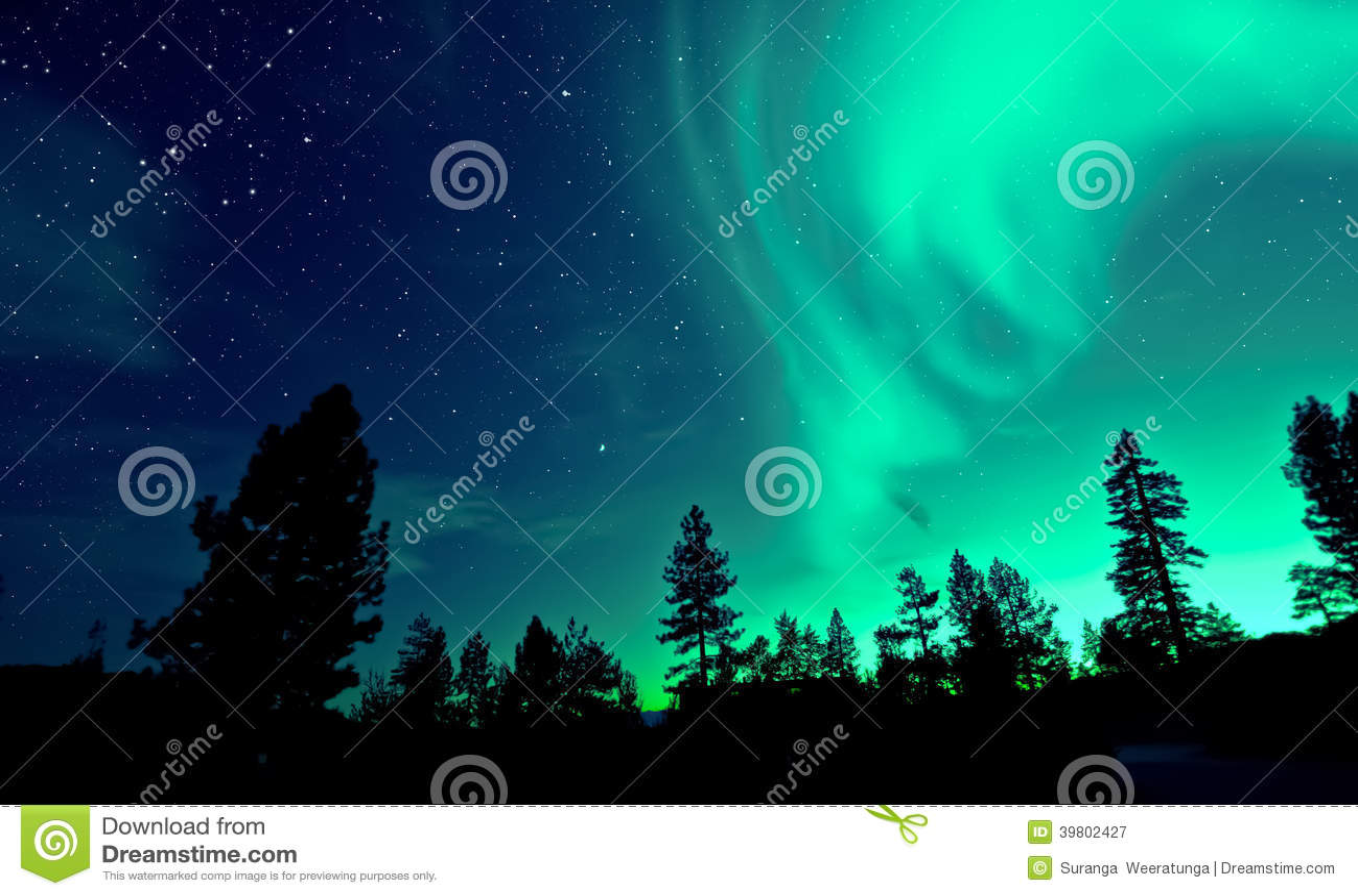 Noordelijk Lichtenaurora borealis over bomen
