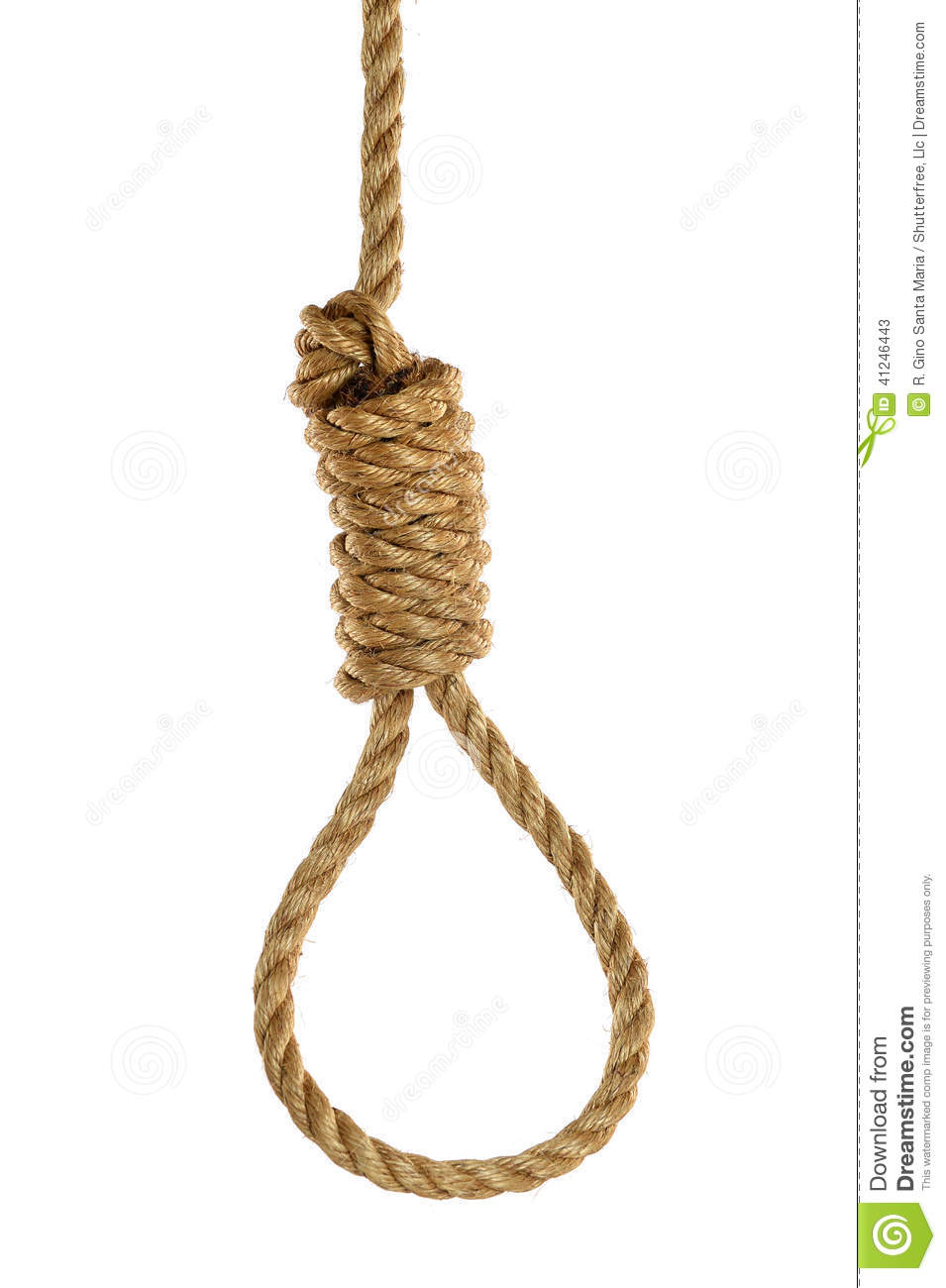 Noose Over White Background Stock Image Image 41246443