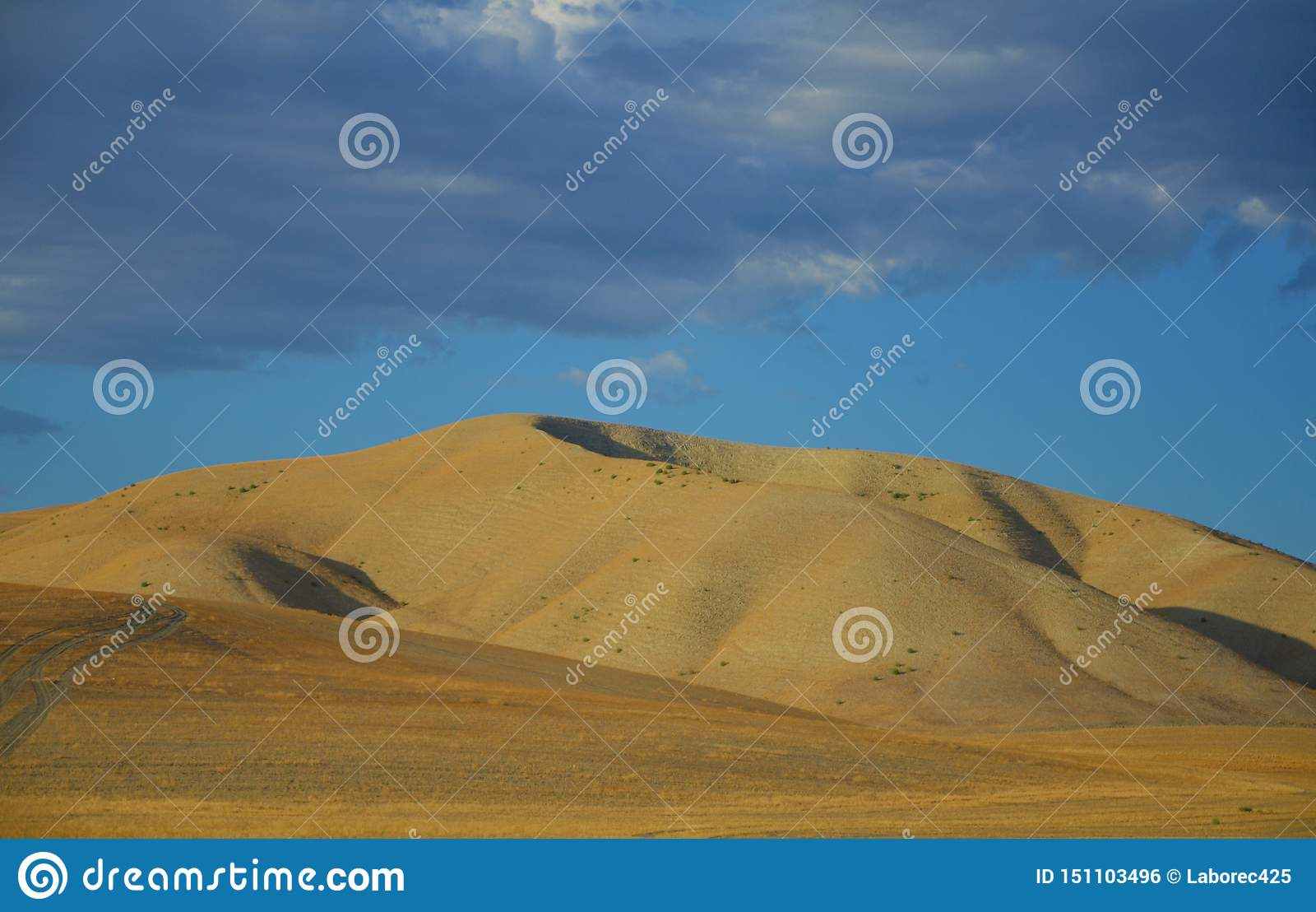 Nord-Kalifornien-Berge im Spätsommer mit blauem Himmel