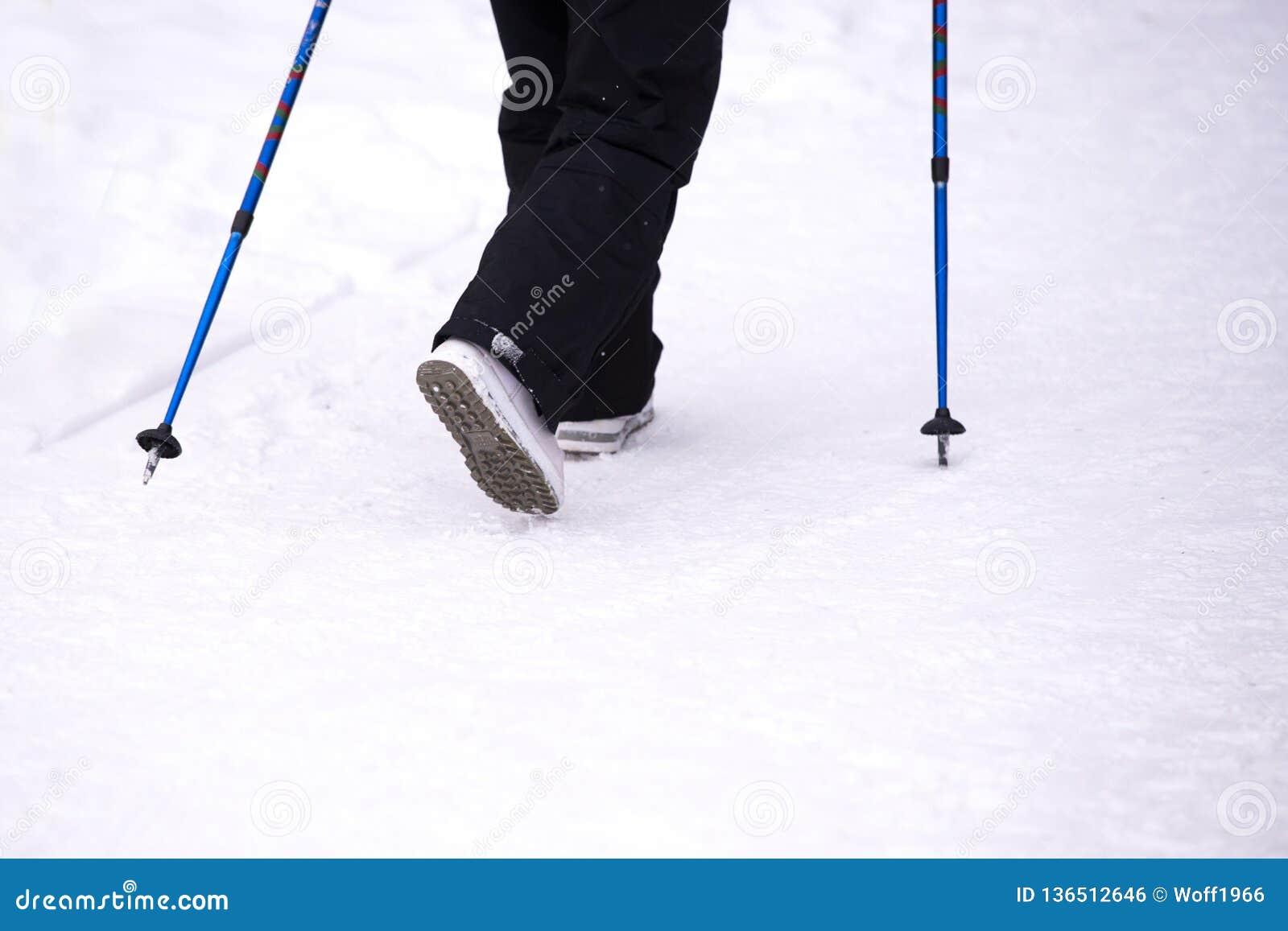 Nordic walking in winter , women s legs and walking sticks in snow