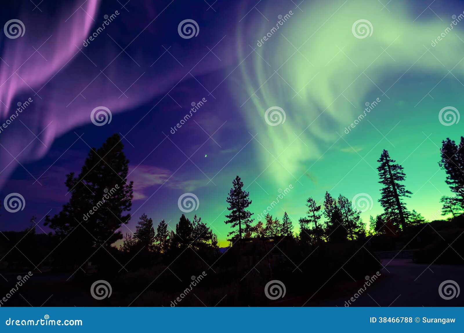 Nordlichtaurora borealis im nächtlichen Himmel über schöner Seelandschaft