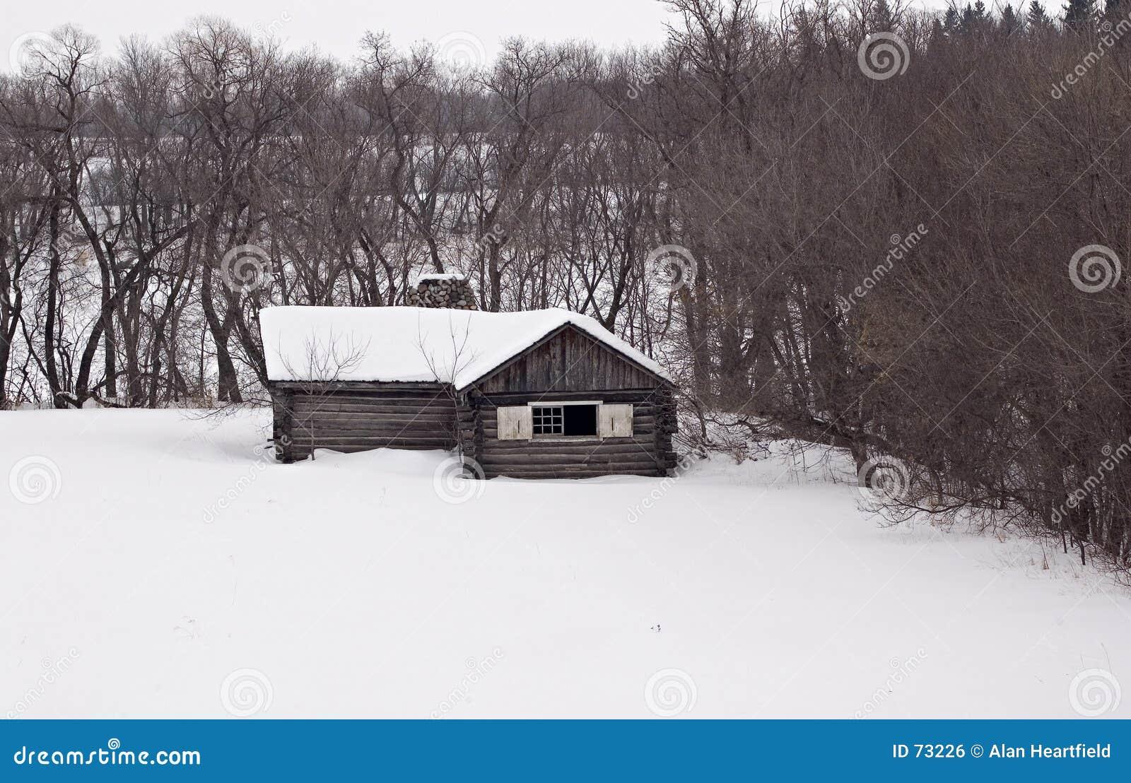 Nordlig kabin