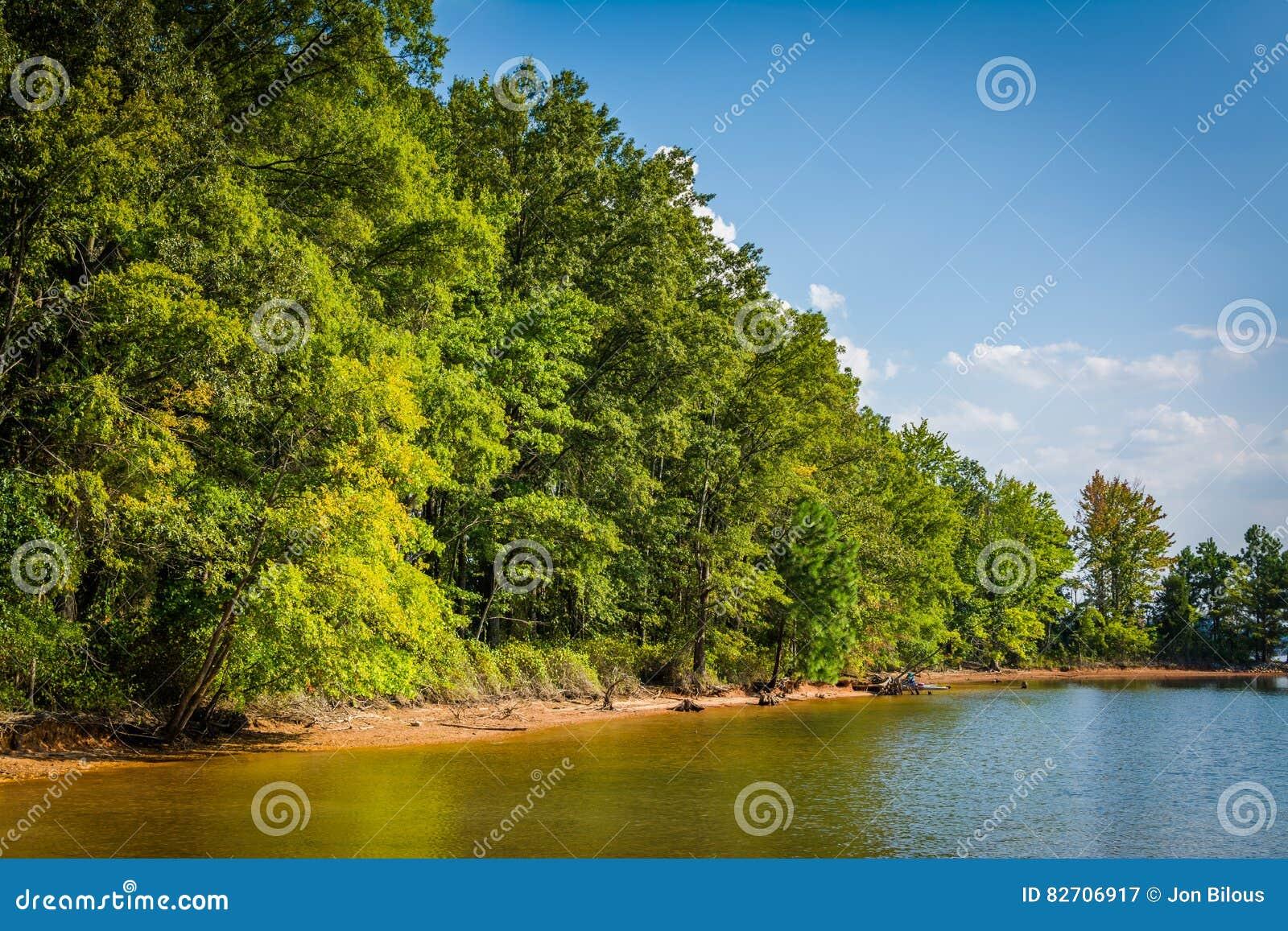 Normanno del lago al parco del jetton in cornelius nord for Cabina lago north carolina