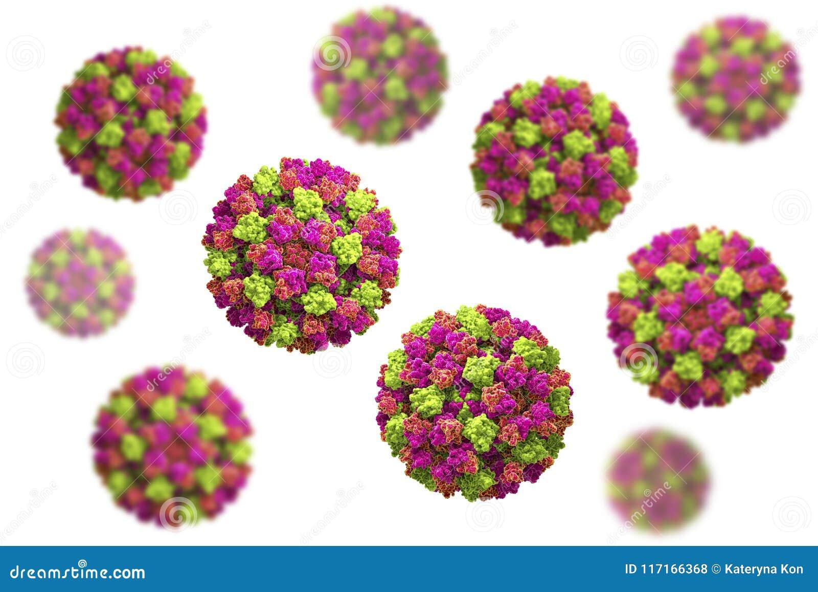 virus vomito diarrea
