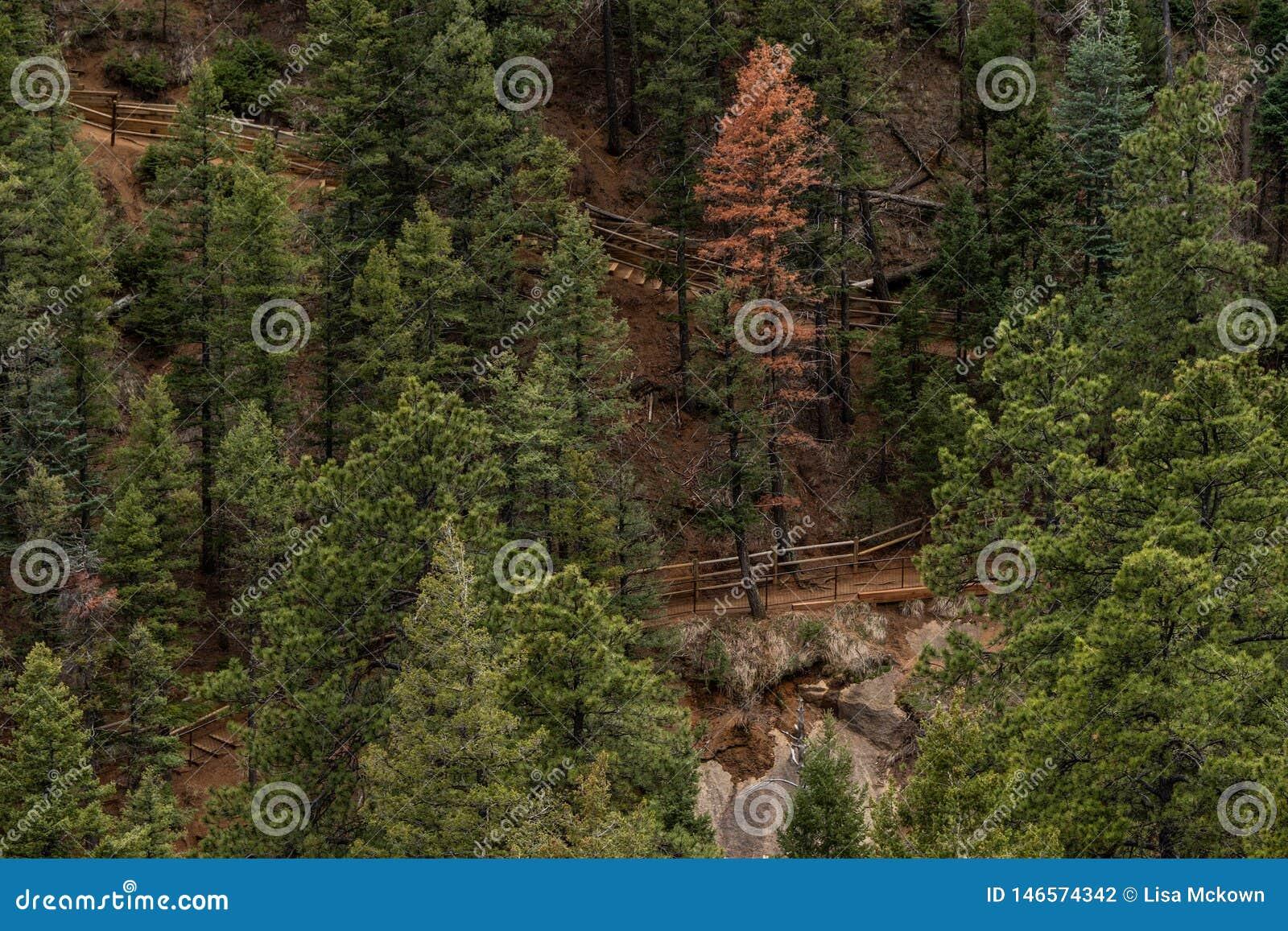 Norr cheyenne kanjonkanon Colorado Springs