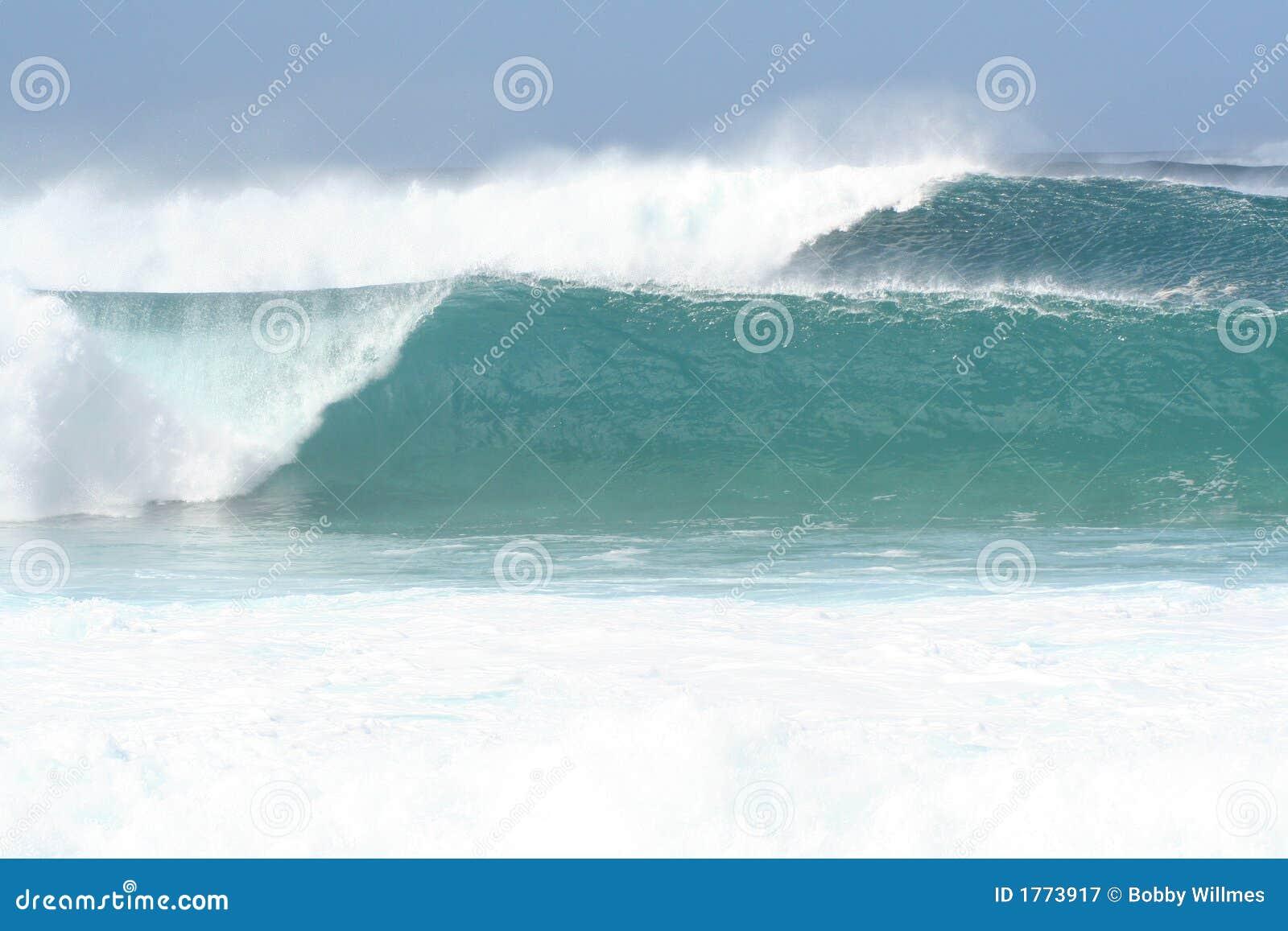 Norr kustwaves