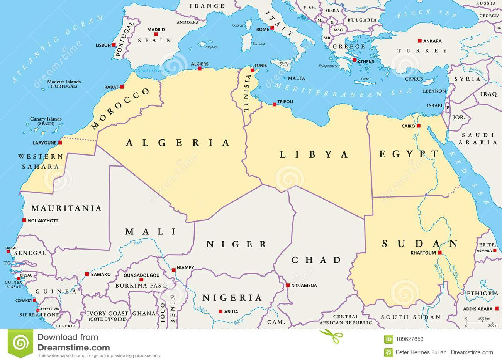 North Africa Region, Political Map Stock Vector   Illustration of