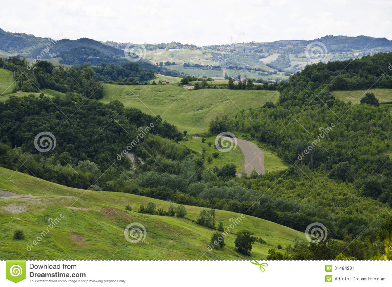 Northern italy green hills stock image image 31484231 for Green italy