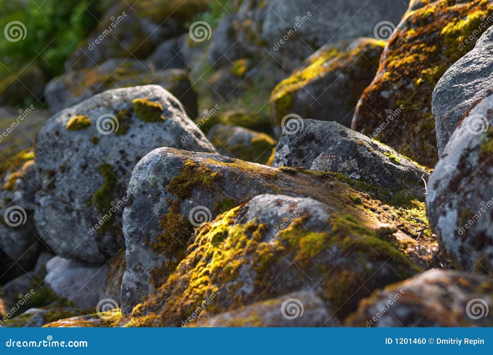 Northern stones