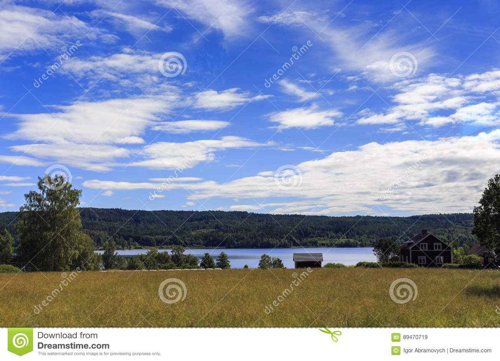 Northern Swedish landscape