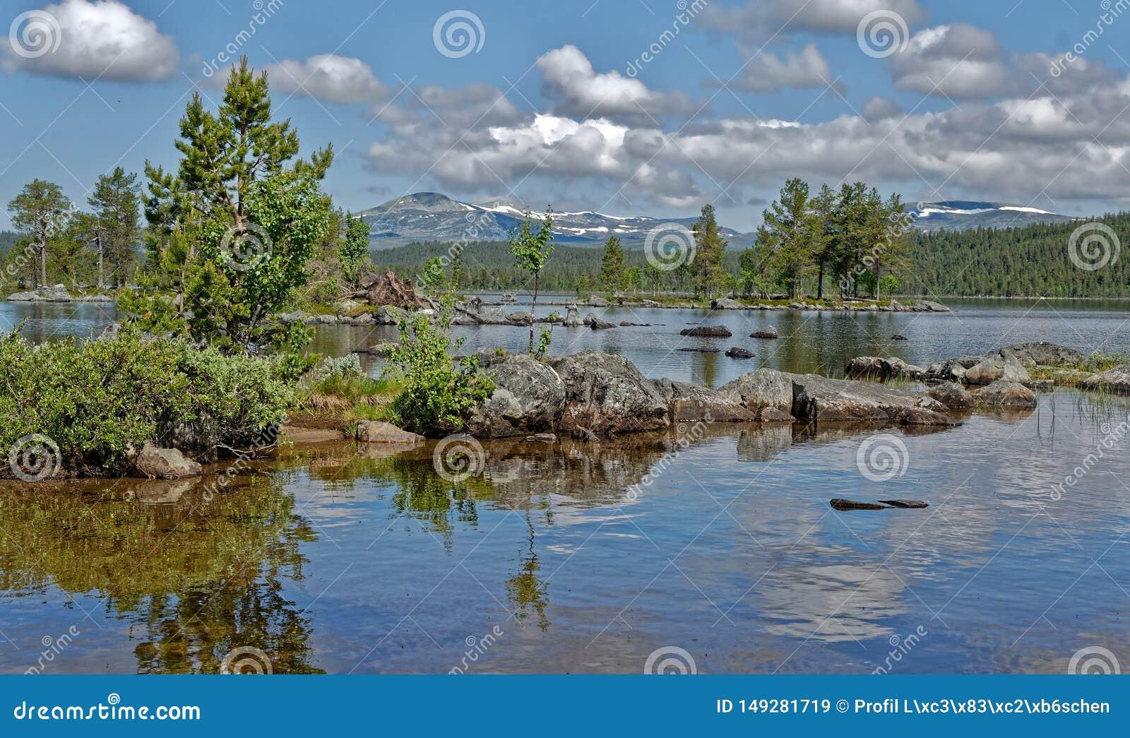 Norwegen-Sommer in Gutulis 5