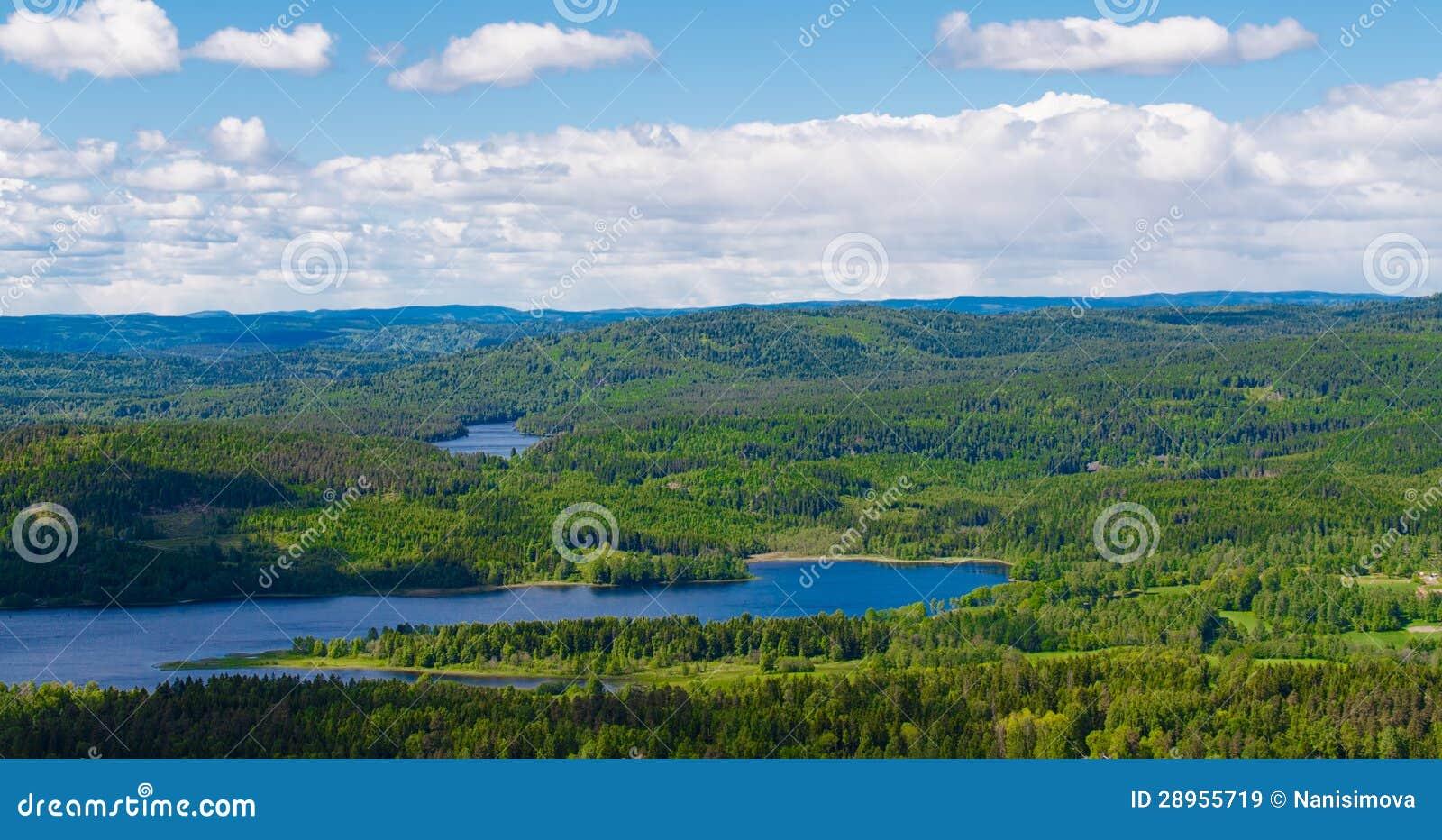 Norwegia jeziora i las
