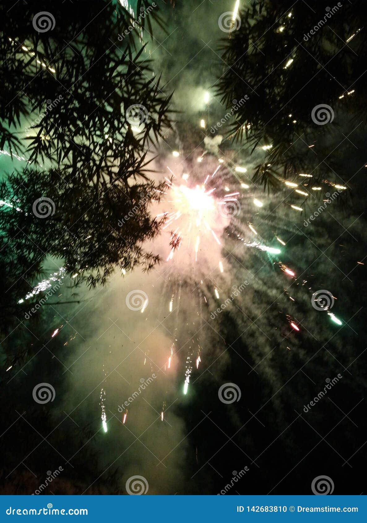 Nos fogos de artifício lindos do céu noturno