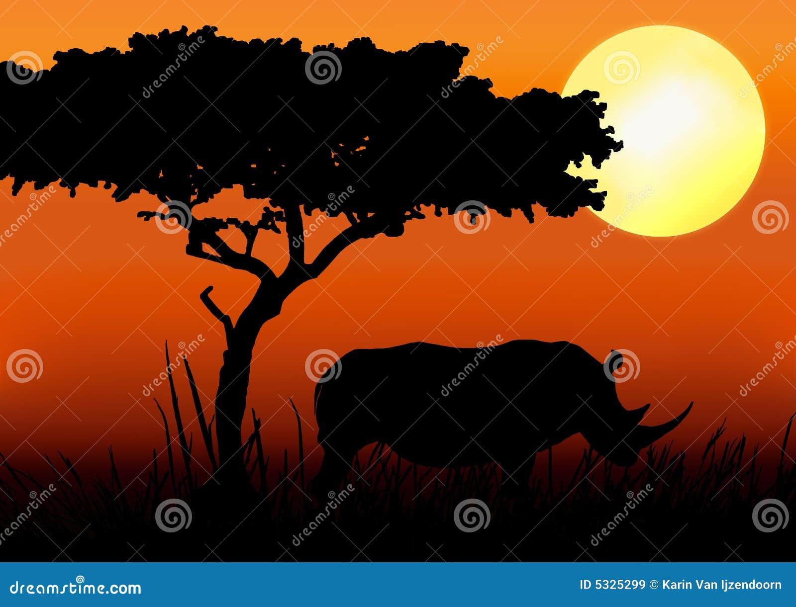 Nosorożec sylwetki słońca