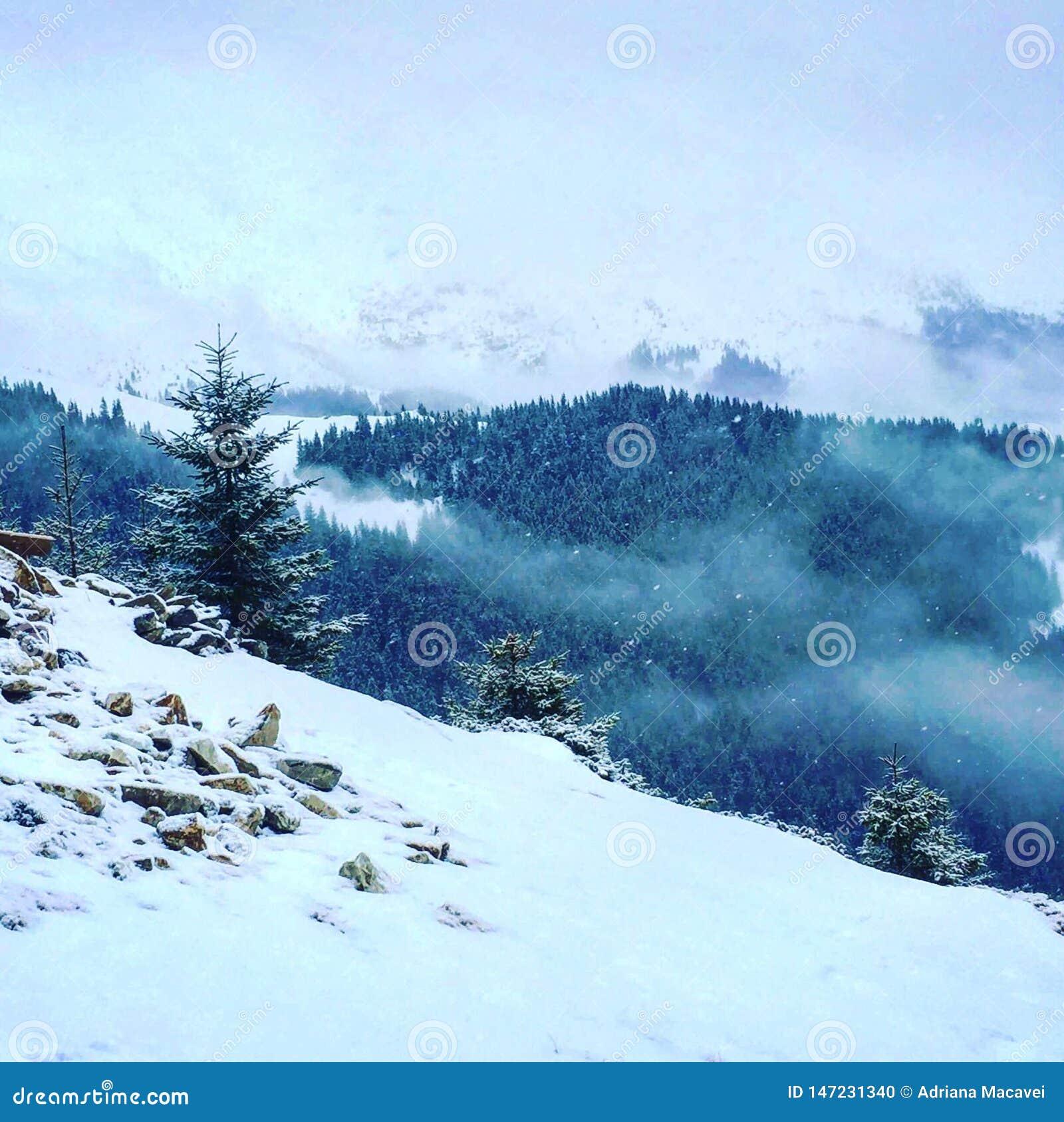 Nossa montanha coberta com a neve