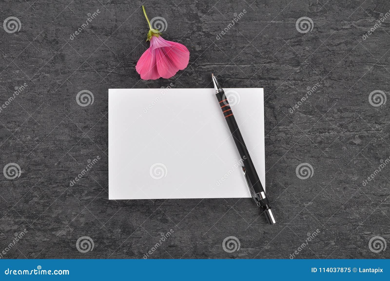 Note, stylo et mauve sur l ardoise