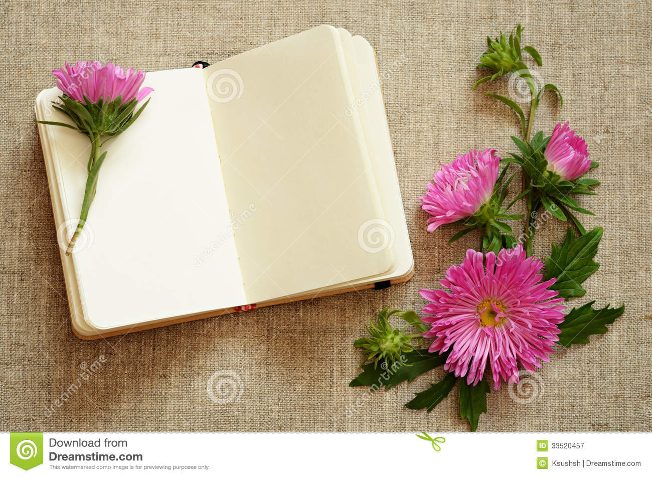 Notebook and asters composition in a corner