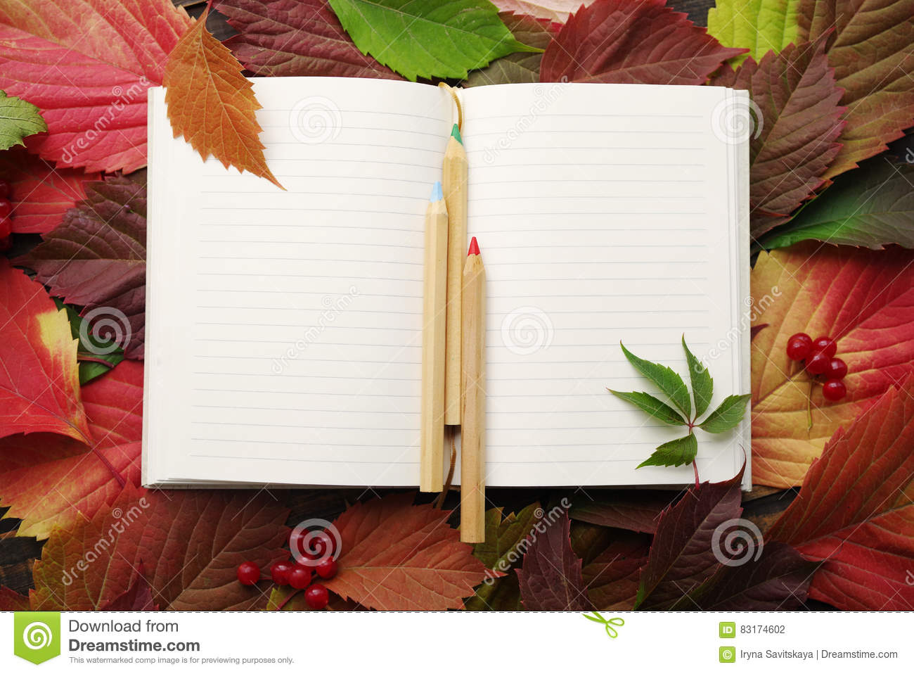 Blank pages to color on - Notebook With Blank Pages And A Wooden Color Pencils On Autumn Leaves