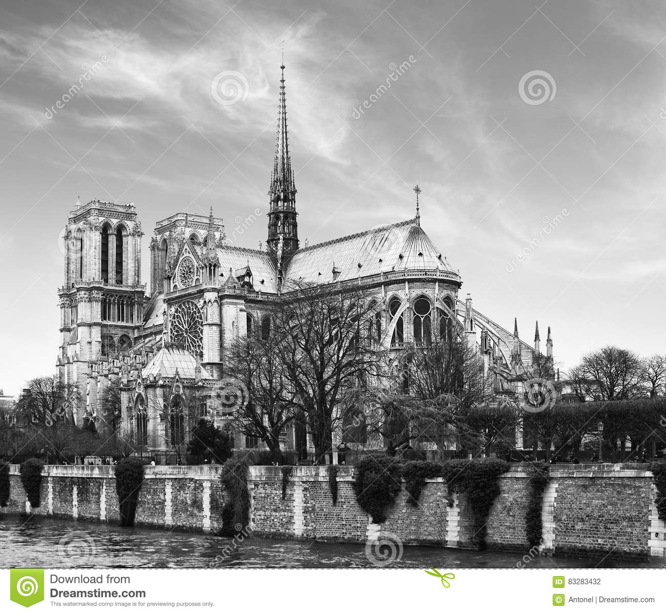 black singles in notre dame Are you notre dating ndtv: notre dame television loading  the very messed up origins of hunchback of notre dame | disney explained - jon solo.