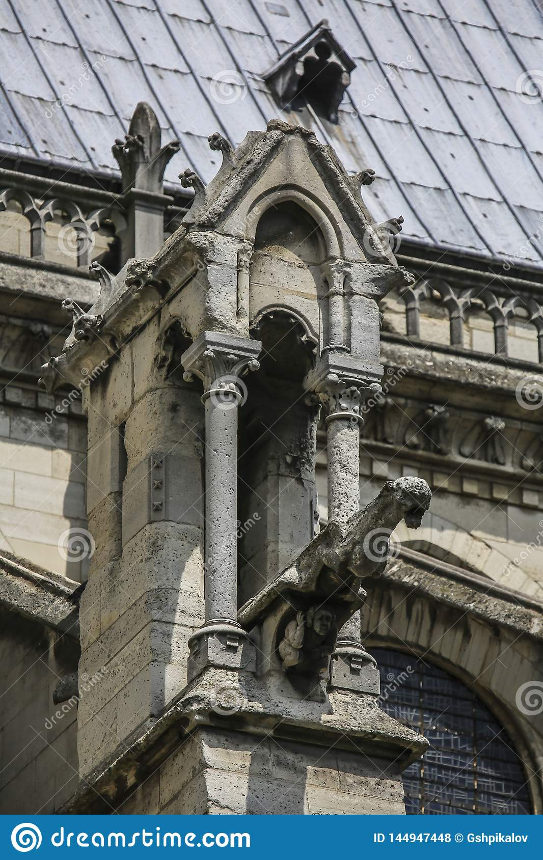 Notre Dame of Paris, France, ancient statue on roof, gargoyle