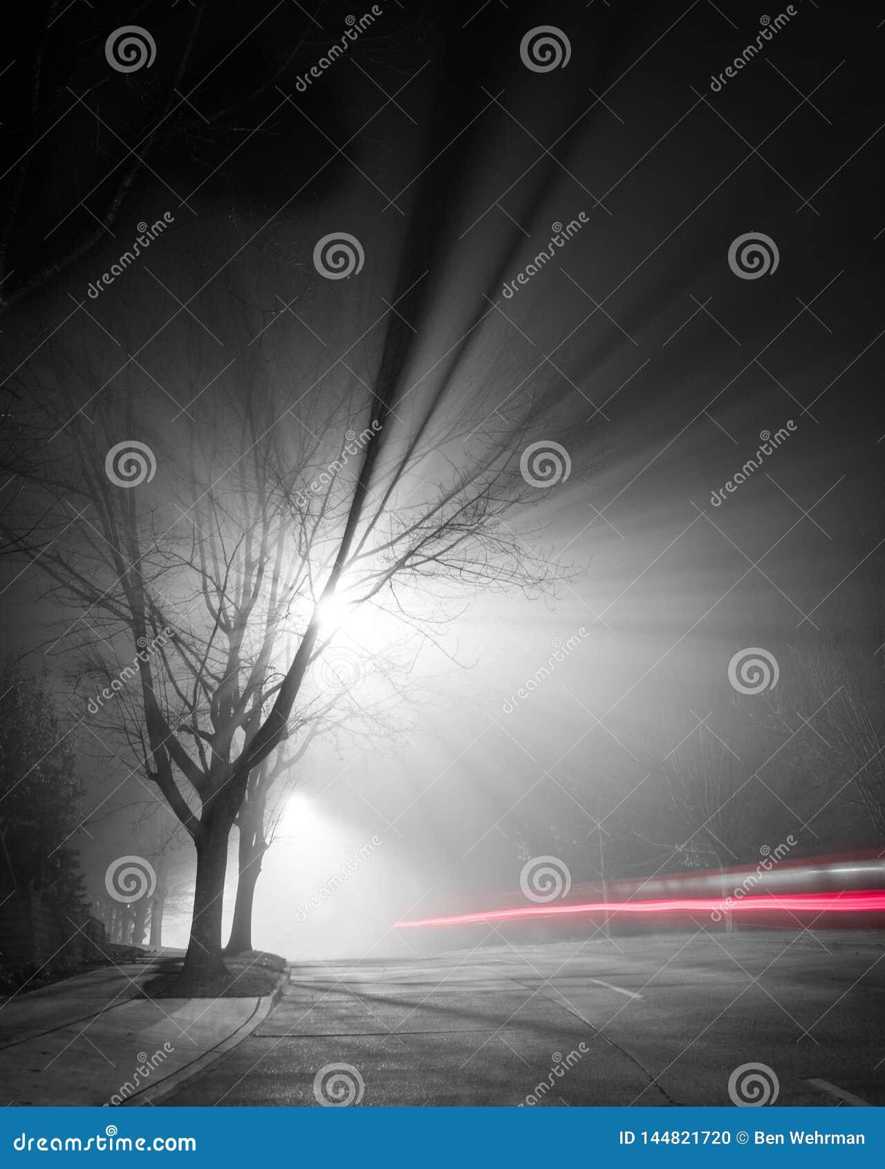 Notte nebbiosa di esposizione lunga