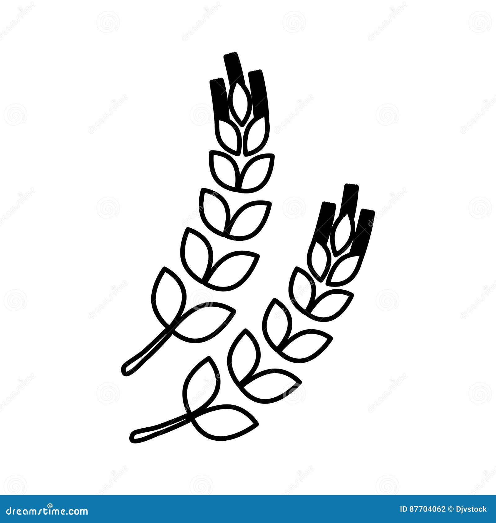 Nourriture naturelle de blé