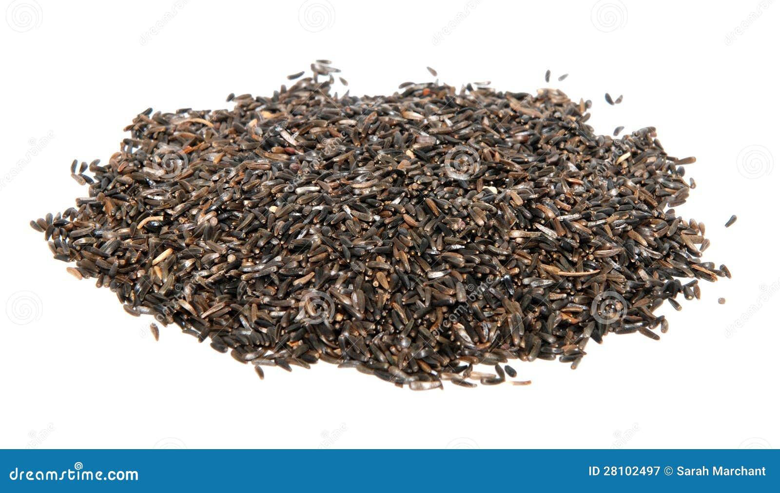 Nourriture pour oiseaux de graine du niger image stock image 28102497 - Graines pour oiseaux du ciel ...