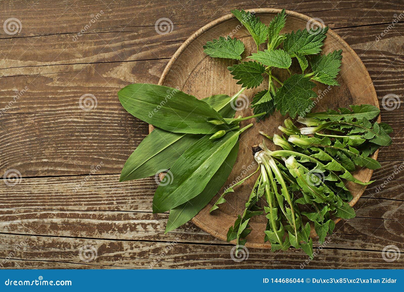 Nourriture saine de ressort avec des feuilles de pissenlit et d ortie d ail sauvage