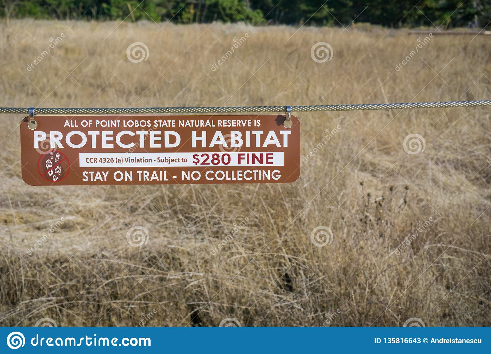 November 5, 2017 Carmel-By-The-Sea/USA - Protected Habitat, Stay on trail - no collecting sign in Point Lobos Stare Reserve, a