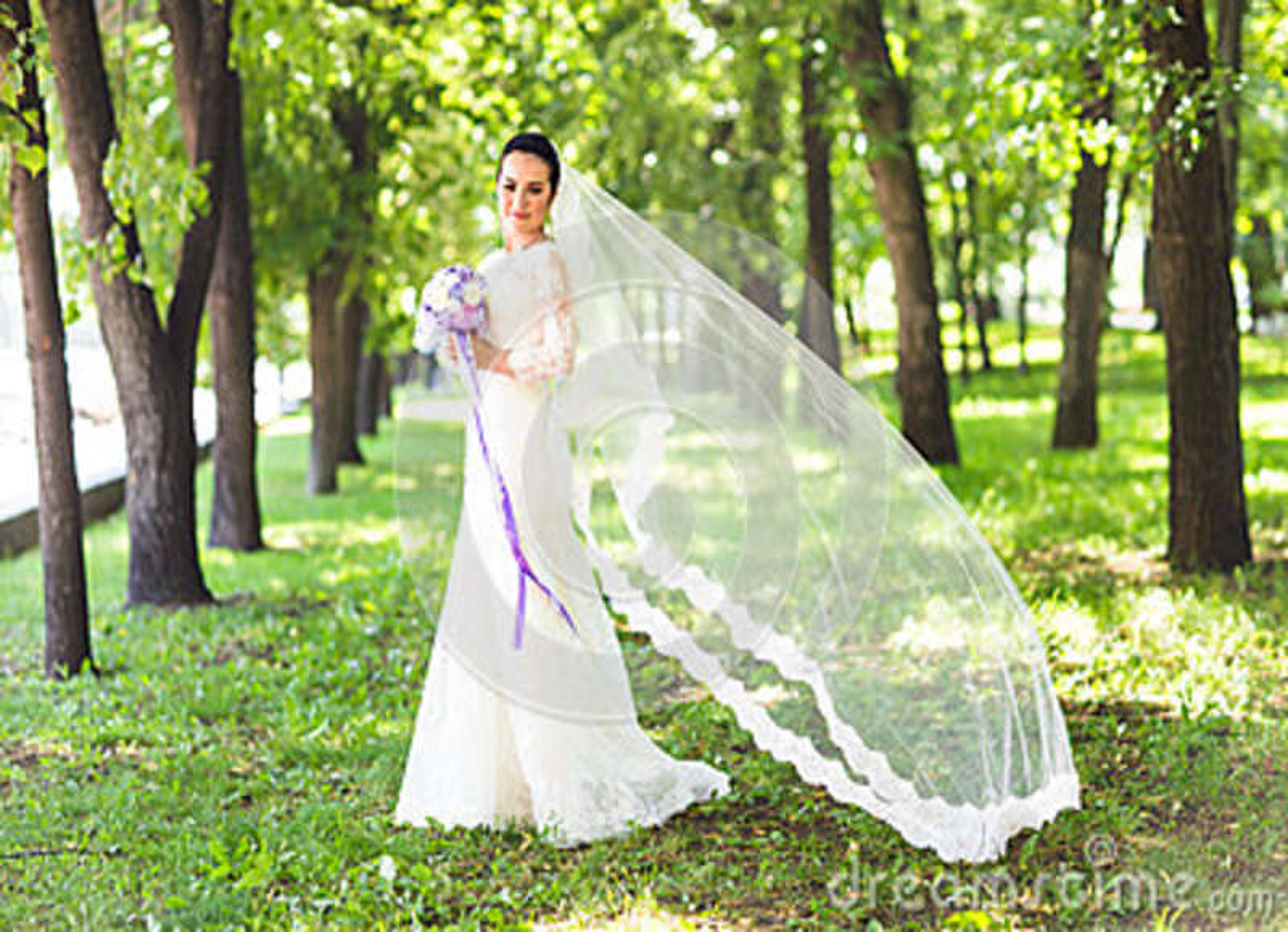 Novia morena joven sensual hermosa en vestido y velo blancos largos de boda al aire libre