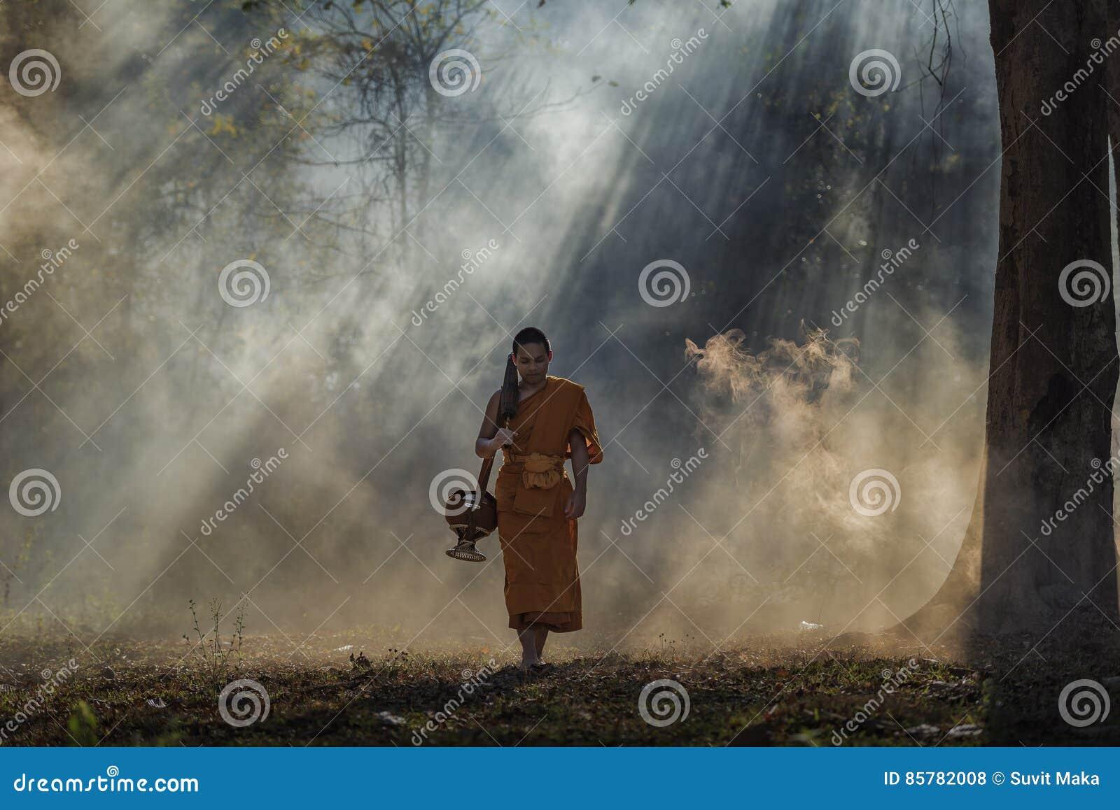 Novice monk