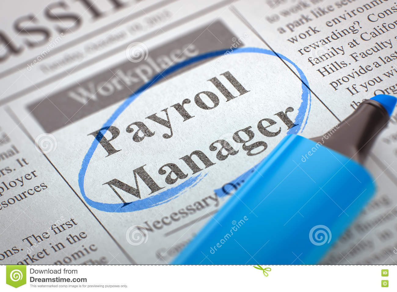 Image result for Payroll Manager