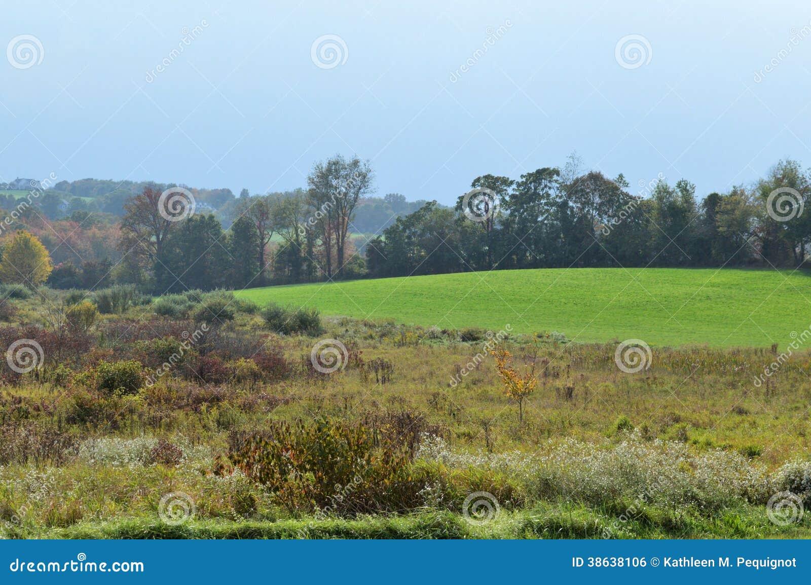 Nowa Anglia krajobraz