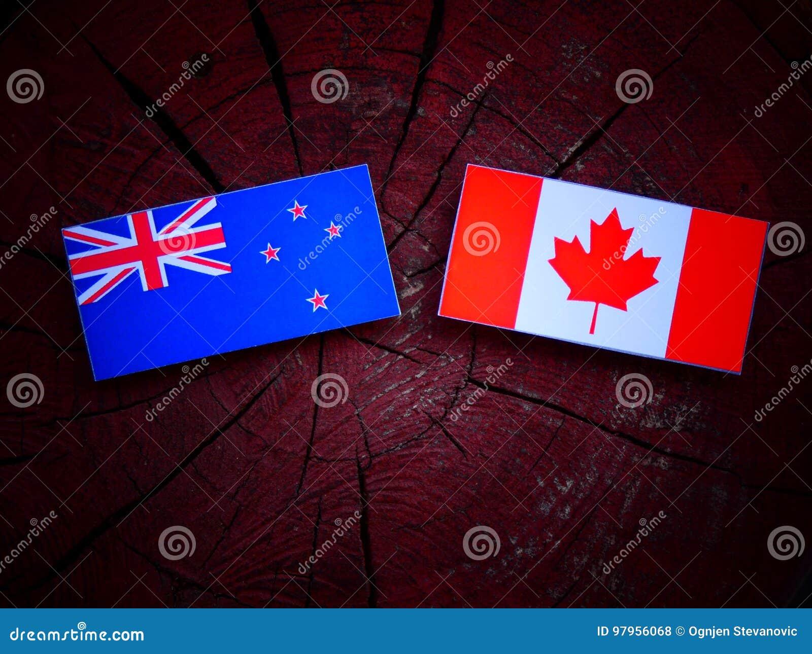 Nowa Zelandia flaga z kanadyjczyk flaga na drzewnym fiszorku odizolowywającym